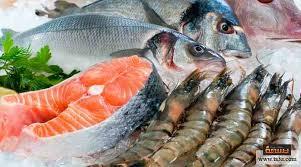 أسعار السمك اليوم بسوق العبور
