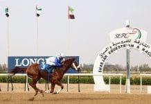 سباق الخيل فى الامارات